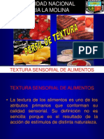 TEXTURA SESNORIAL DEFINICION.ppt