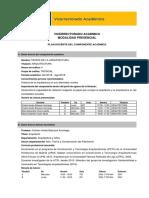 PLAN ACADEMICO_TEORIA_ARQUITECTURA.pdf