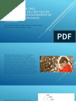 Distribución de Tres Polimorfismos Del Gen TSLP En