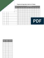 Formato_Programa_SST.xlsx