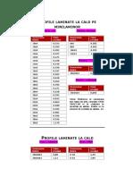 greutati specifice profile.doc