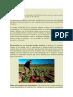 La Geografía Económica Relaciona La Actividad Económica