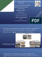 Granito y granodiorita.pptx