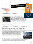 XyleneSp.pdf