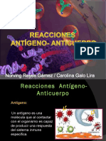 Reaccionesantgeno Anticuerpo 130419015351 Phpapp01 (2)