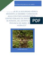 Informe Rondos (1)