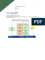 Modelos de Gestion de Calidad Aplicados en Chile.pdf