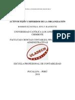 ACTIVOS FIJOS Y DEFIRIDOS DE UNA ORGANIZACION.pdf