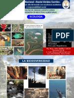 Ecologia Semana 05 Biodiversidad Cuantificacion Metodos y Megadiverso