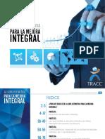 Definitive Guide to Integrative Improvement TRACC 516