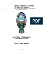 Auditoria Informatica caso_Shibukai corp.pdf