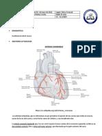 mayo 10 2018 instituto del corazon angiografia coronaria