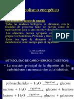 Metabolismo de Os Carbohidrtaos