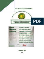184320197-Informe-de-Plasmolisis-y-Turgencia-2.docx