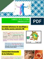 Cambios en El Sistema Inmunologico