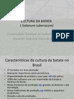 CULTIVO DE BATATA.pptx