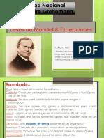 Leyes de Mendel - Exposición