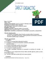 0 Proiect_elemente_intuitive_de_geometrie-1.doc