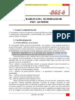BGS 06.pdf