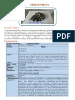 arsenopirita.pdf-BERTONY.pdf