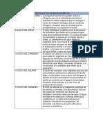 PRINCIPALES CICLOS BIOGEOQUIMICOS.docx
