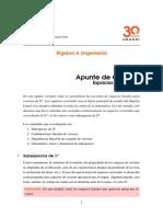 Apunte III Espacios vectoriales.pdf