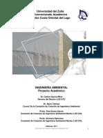 Proyecto Ingenieria Ambiental. OPSU Ene2011