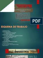 Alternativas de Acceso Al Terminal - Grupo 5.1