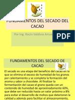 Fundamentos Del Secado Del Cacao