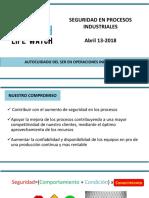OS Seguridad en Las Operaciones Industriales Abril13 Fedepalma