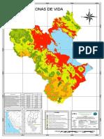 ZONAS-de-Vidad-Puno1.pdf