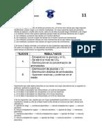 Evaluacion 11 Tercer Periodo Biologia 2017
