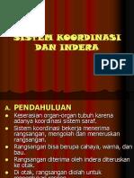 sistem_koordinasi_ppt.ppt