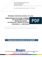 00Ghid Specific 3.1.B -BI - Apel 2
