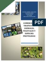 COMERCIO O TRAFICO DE ANIMALES, VEGETALES Y ESPECIES PROTEGIDOS - copia.docx