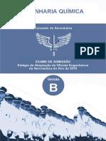 Engenharia Química  Versão B.pdf