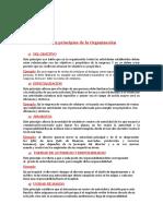 9 principios