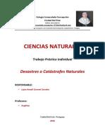 trabajo práctico_Luján Coronel_Actualizado (1).docx