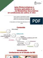 PPT Seminario Fito 0205