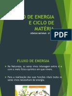 12_Fluxo de Energia e Ciclos Da Matérias