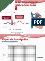 5.EKG Normal