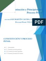 Constitucion y Principios Del Proceso