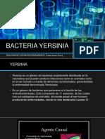 BACTERIA YERSINIA expo1miroorganismos.pptx