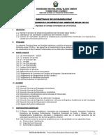 Directiva Desarrollo Semestre 2018-A