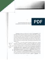 BENDIX_R._Construcao_nacional_e_cidadani.pdf