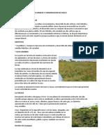 Informe de Manejo y Conservacion de Suelo