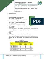 proyecto lavanderia.docx