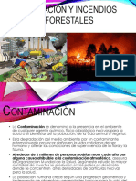 Contaminaciòn y Incendios