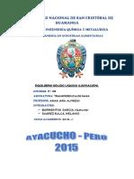 INFORME VI.pdf