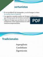 micosis-oportunistas-2013
